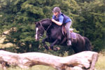 Cross country horse jumping events