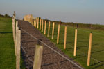 Walkways between paddocks - for your safety